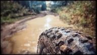 My bike trail that I run everyday (Snapseed)
